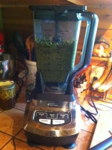 every herbalist needs a good blender or food processor!  i highly recommend the